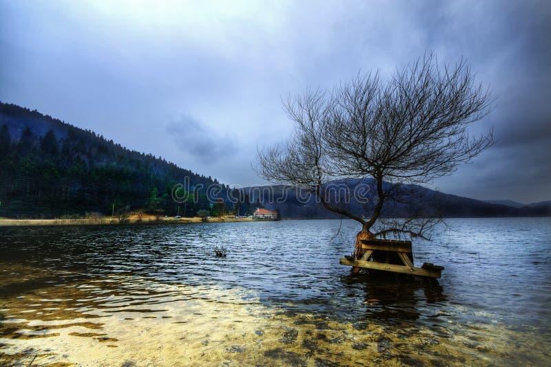 Herbstlandschaft im Abant See - Bolu, die Türkei lizenzfreies stockfoto