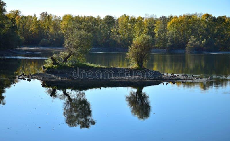 Herbstlandschaft mit einer kleinen Insel im See mit einigen Gänsen stockfotografie