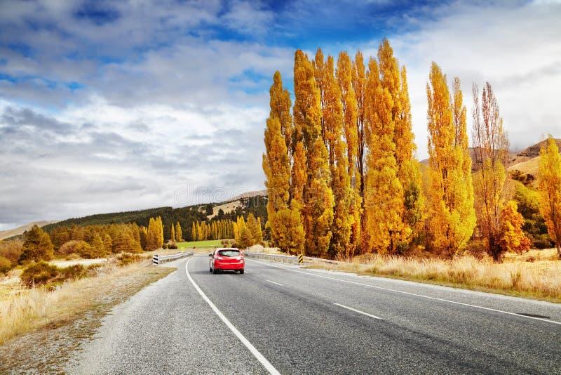 Herbstlandschaft, Neuseeland lizenzfreie stockfotografie