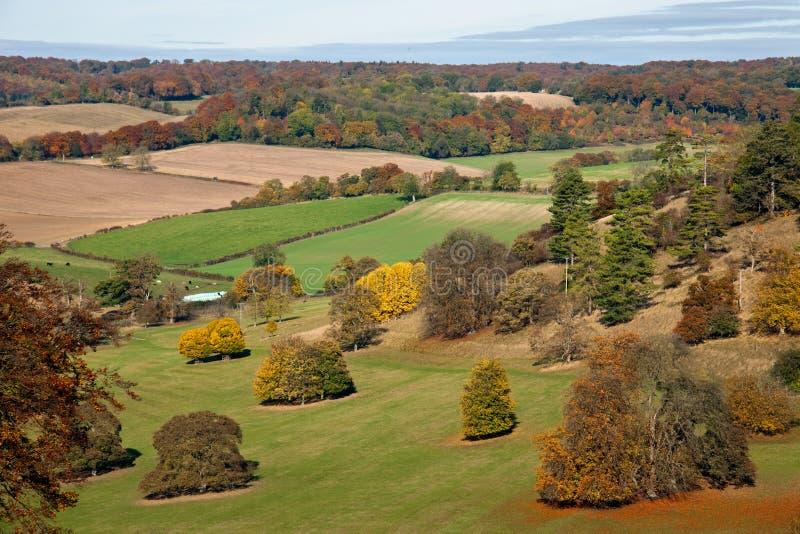 Herbstlandschaftsansicht in das Chilterns, England stockfotos