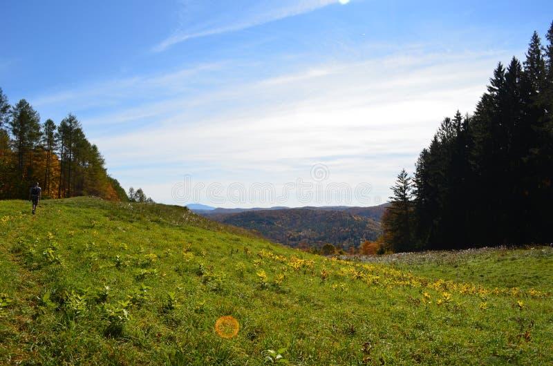 Herbstlandschaftsansicht von der Bergspitze in Vermont lizenzfreie stockfotos