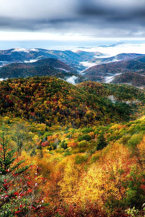 Herbstlaub auf blauer Kantenallee nahe maggie Tal Nordca lizenzfreie stockbilder