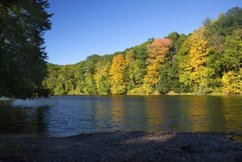 Herbstlaub auf dem Westfield-Fluss, Massachusetts lizenzfreie stockbilder