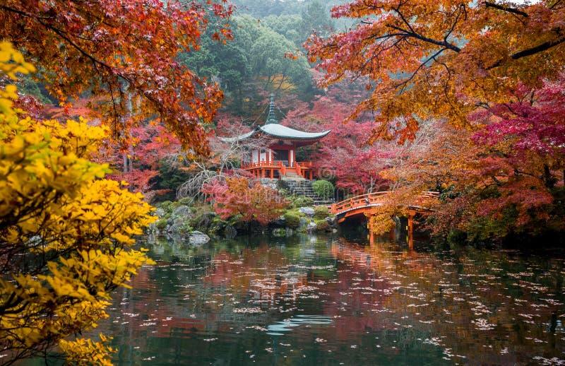 Herbstlaub, der an Daigoji-Tempel in Kyoto fällt lizenzfreie stockfotografie