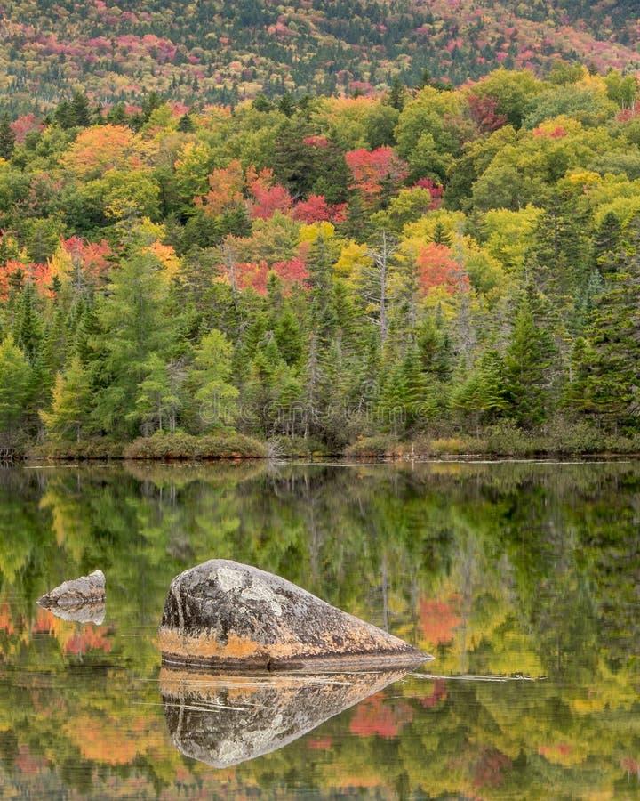 Herbstlaub durch einen See in Nord-Maine lizenzfreies stockbild