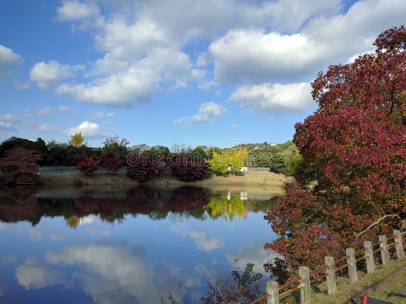 Herbstlaub durch See im Park stockbild