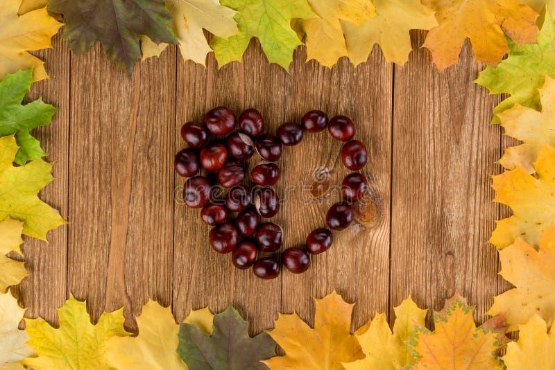 Herbstlaub gestalten und Kastanienherz lizenzfreie stockfotografie