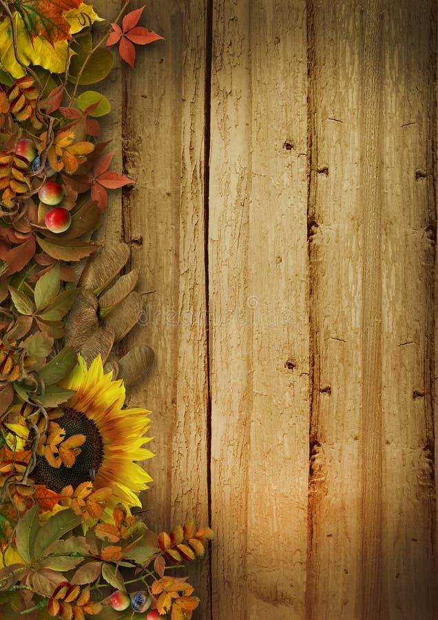 Herbstlaub grenzt an hölzernen Hintergrund der Weinlese an stockfoto