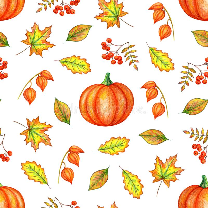 Herbstlaub-, Kürbis- und Ebereschenbeeren lizenzfreie abbildung