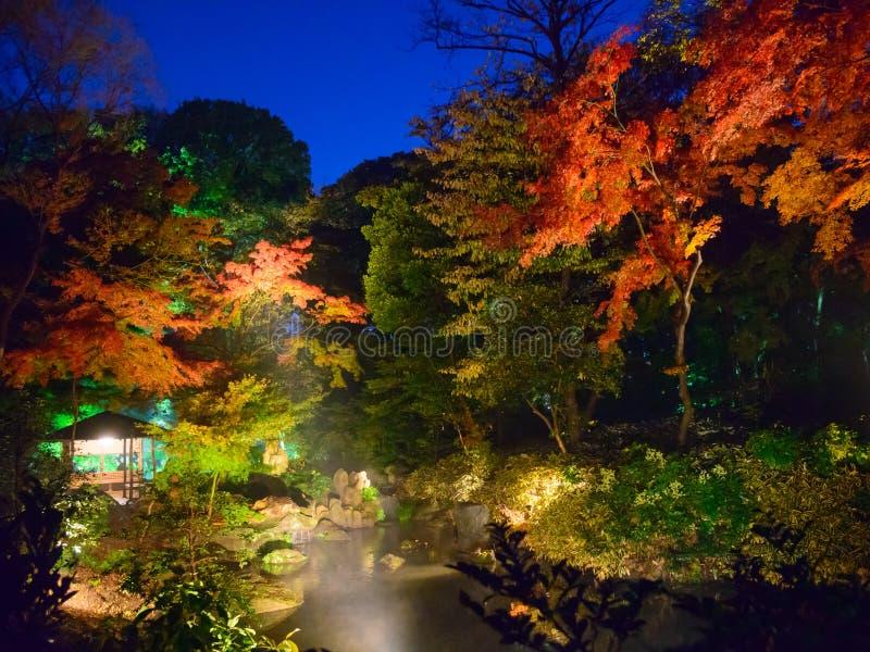 Herbstlaub in Rikugien-Garten, Komagome, Tokyo lizenzfreie stockbilder
