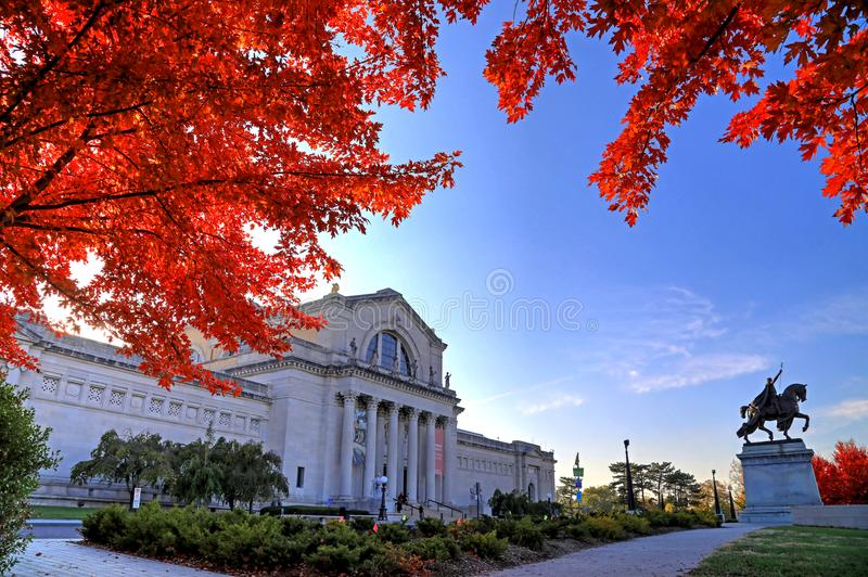 Herbstlaub in St. Louis, Missouri stockbilder