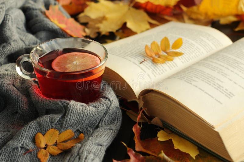 Herbstlaub, Tasse Tee und geöffnetes Buch lizenzfreies stockbild