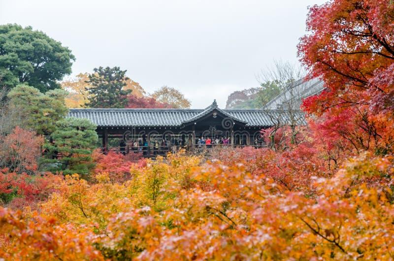 Herbstlaub in Tofukuji-Tempel lizenzfreie stockfotos