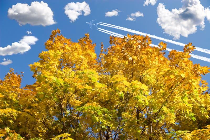Herbstlaub und -flugzeug lizenzfreie stockfotos