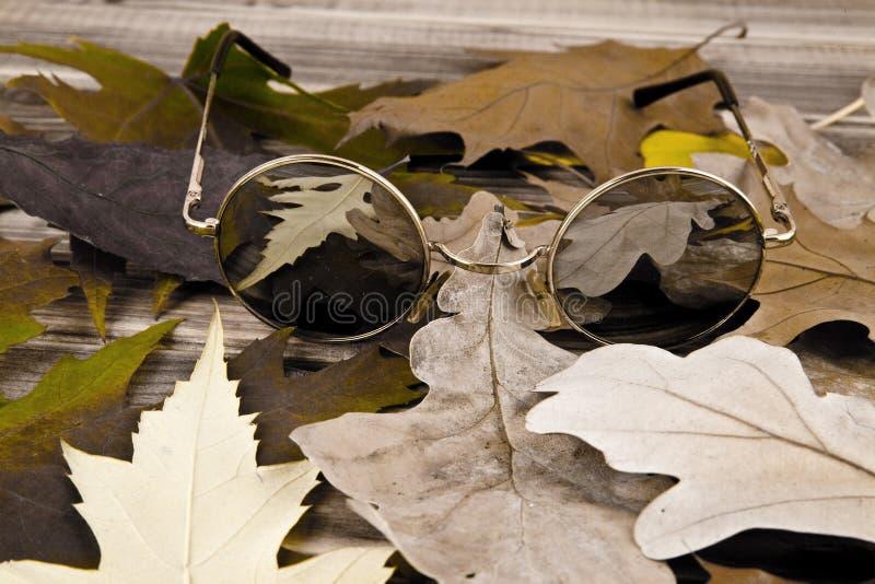 Herbstlaub und Gläser stockbilder