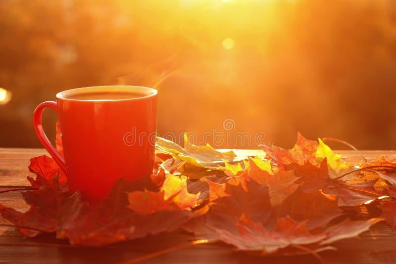 Herbstlaub und Kaffeetasse stockbilder