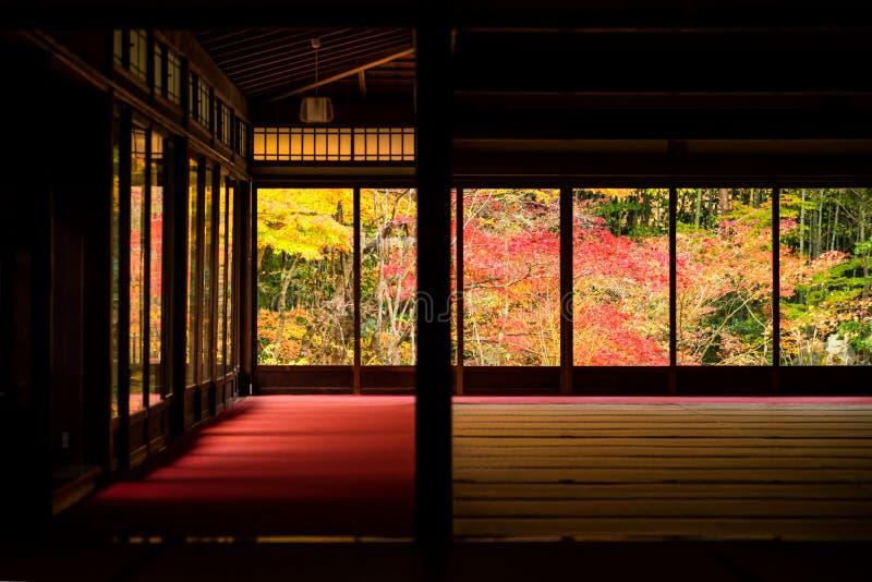 Herbstlaubfarbe bei Nanzen-ji, Kyoto stockfoto