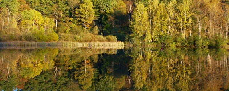 Herbstlaubreflexionen in Vermont stockfotos