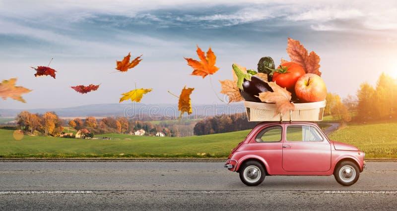 Herbstlebensmittellieferung lizenzfreies stockbild