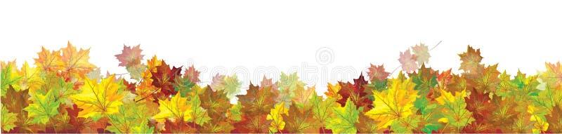 Herbstliche Ahorne des Vektors verl?sst Grenze lokalisiert stock abbildung