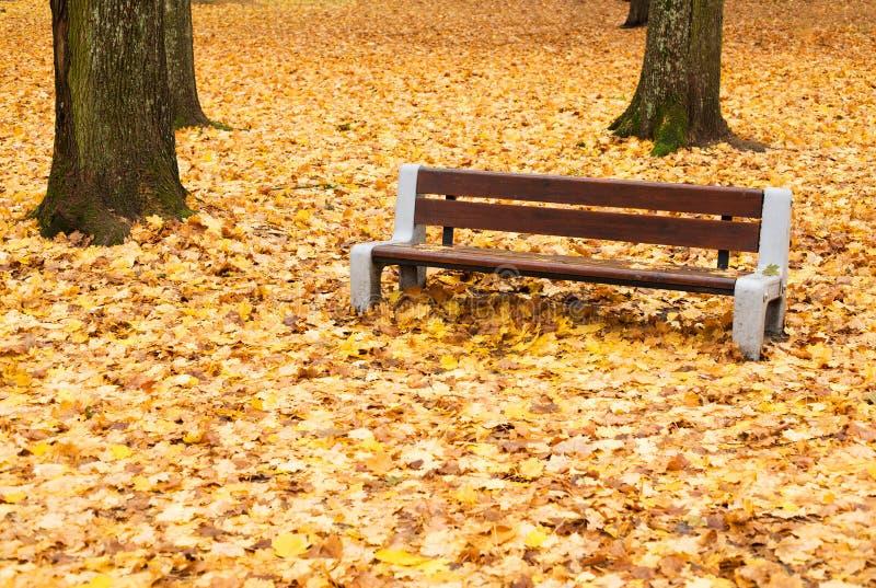 Herbstliche Bank lizenzfreie stockbilder
