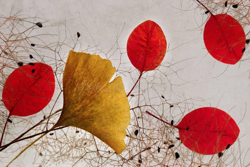 Herbstliche Blätter und Niederlassungszusammensetzung lizenzfreie stockbilder