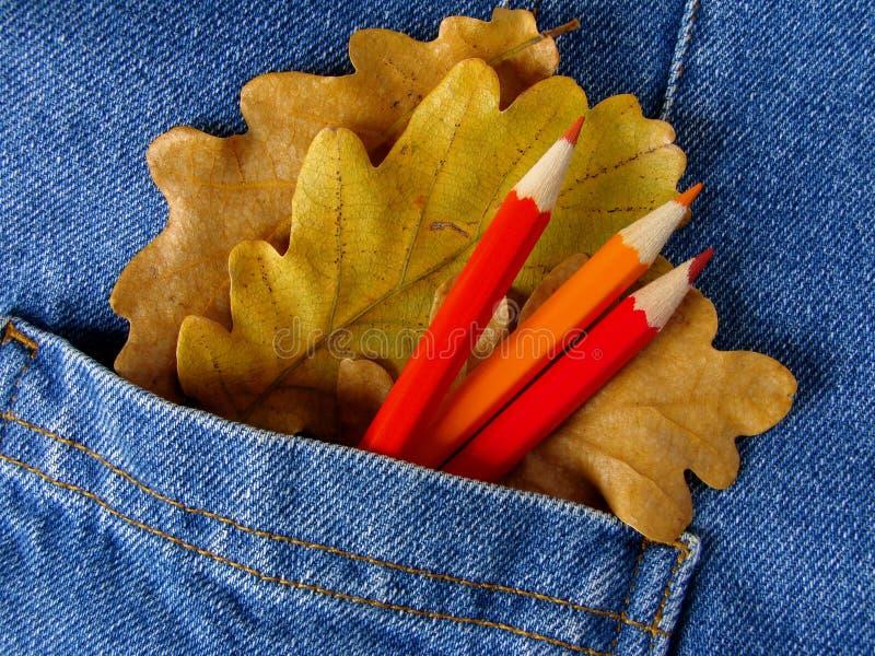 Herbstliche Farben stockbild
