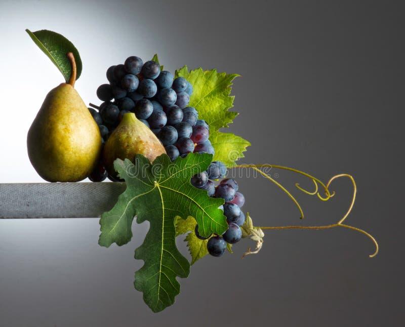 Herbstliche Früchte lizenzfreie stockfotos