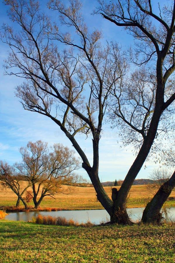 Herbstliche Landschaft lizenzfreies stockbild