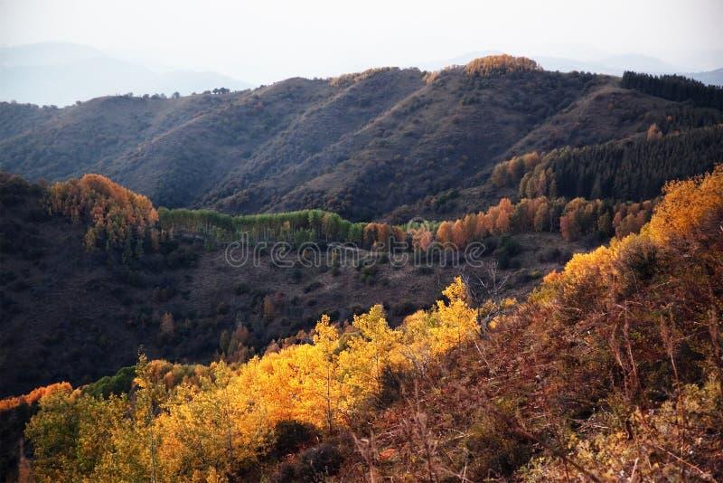 Herbstliche Landschaft stockfotografie