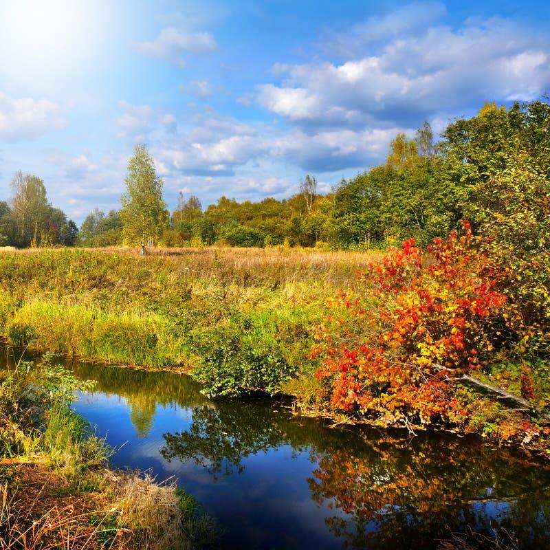 Herbstliche Natur, Landschaft lizenzfreie stockfotografie