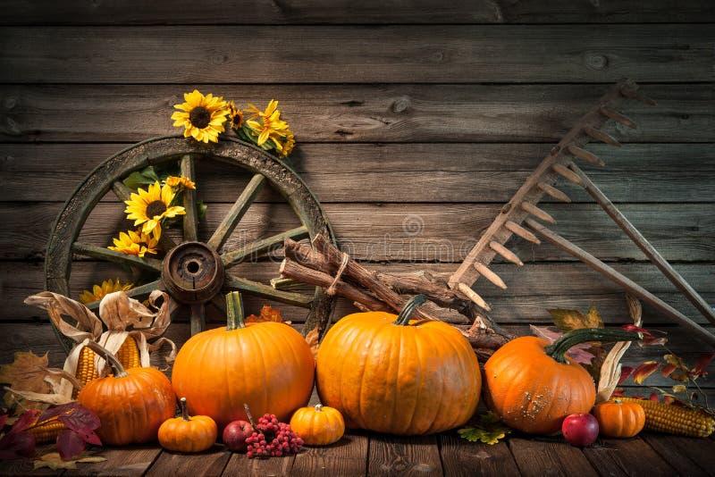 Herbstliches Stillleben der Danksagung mit Kürbisen lizenzfreie stockfotografie