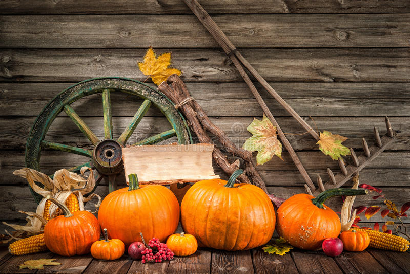 Herbstliches Stillleben der Danksagung mit Kürbisen lizenzfreie stockbilder