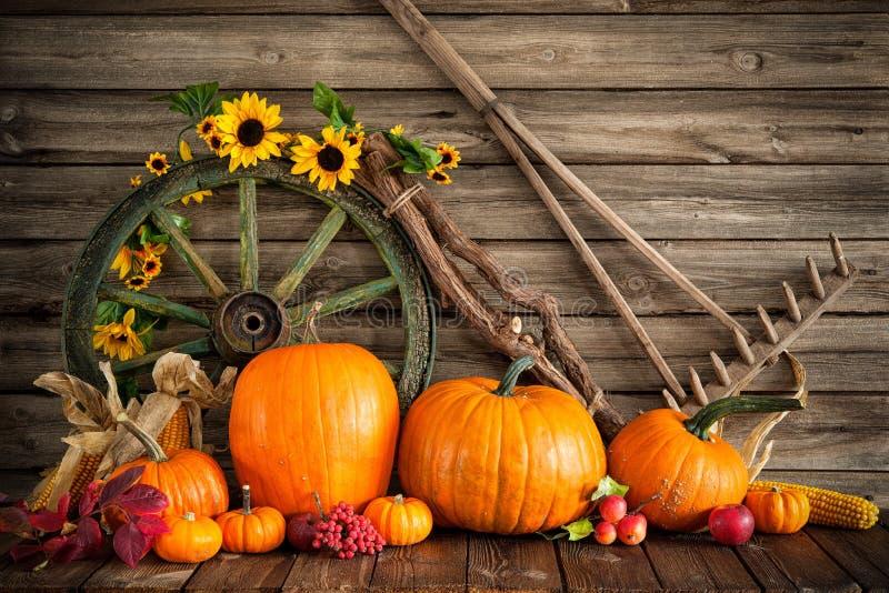 Herbstliches Stillleben der Danksagung mit Kürbisen stockfotos