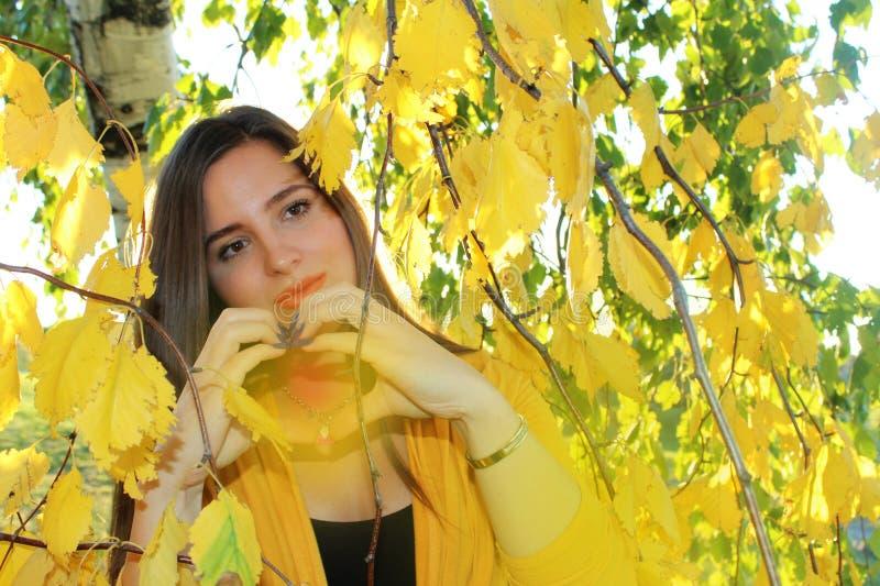 Herbstmädchen draußen stockbild