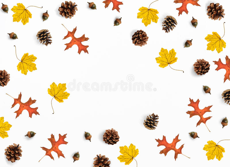 Herbstmodellszene Kreative Fallzusammensetzung gemacht vom bunten Ahorn, von den Eichenblättern, von den Kiefernkegeln und von de lizenzfreies stockfoto
