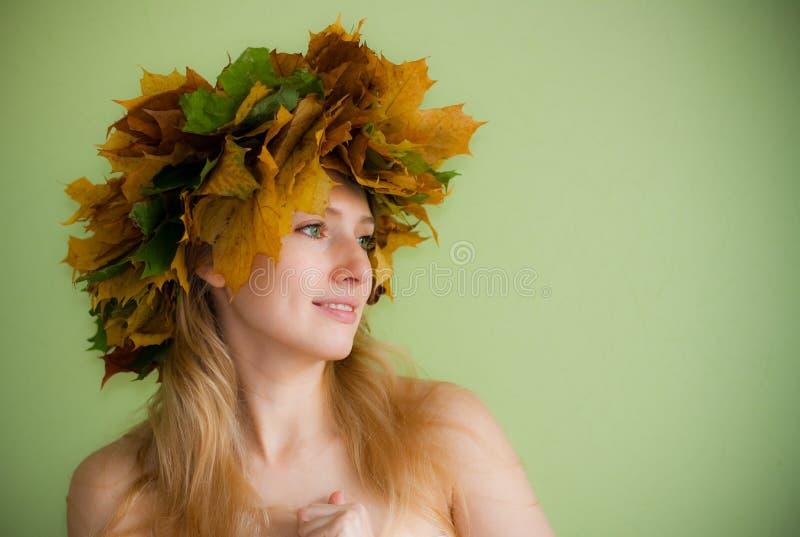 Herbstnymphe stockfotos