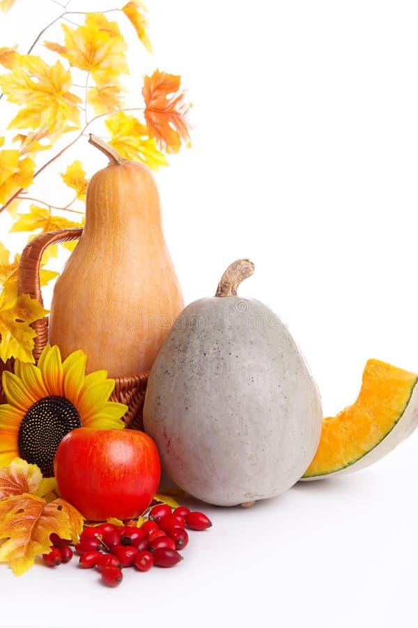 Herbstobst und gemüse -im Korb mit Blättern lizenzfreies stockbild