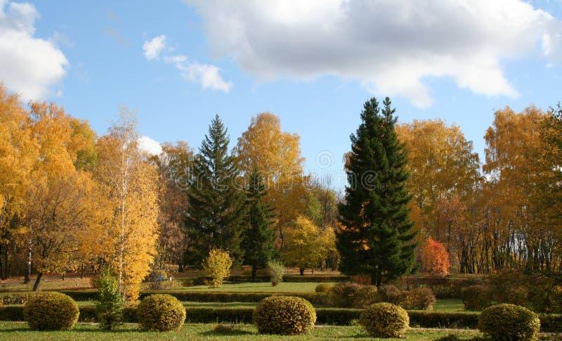 Herbstpark stockbild