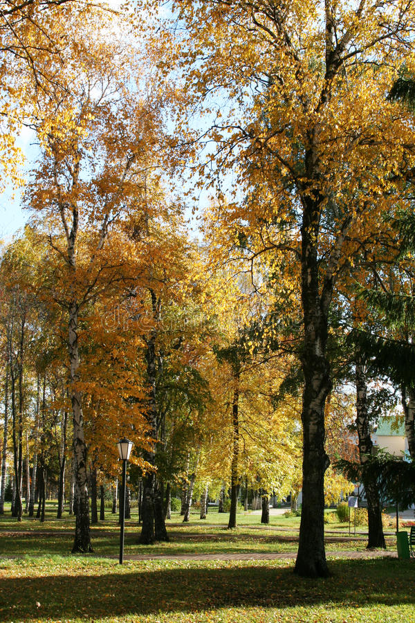 Herbstpark lizenzfreie stockfotografie