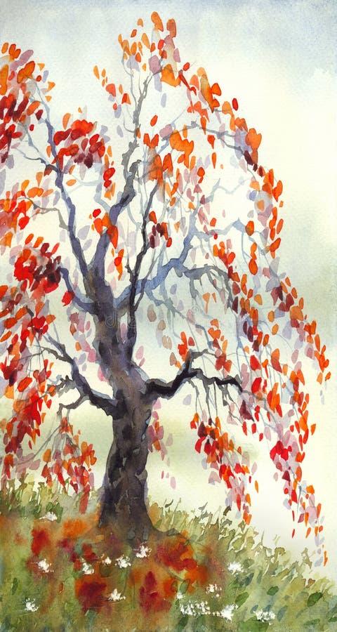Herbstpark mit kleiner Br?cke Alter Herbstbaum am nebeligen Tag lizenzfreies stockbild