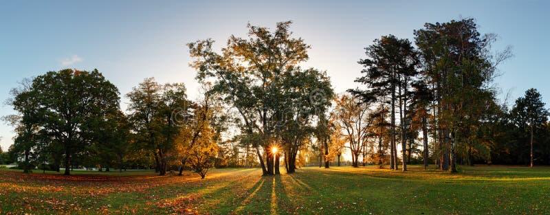 Herbstpark - Panorama mit Sonne stockbilder