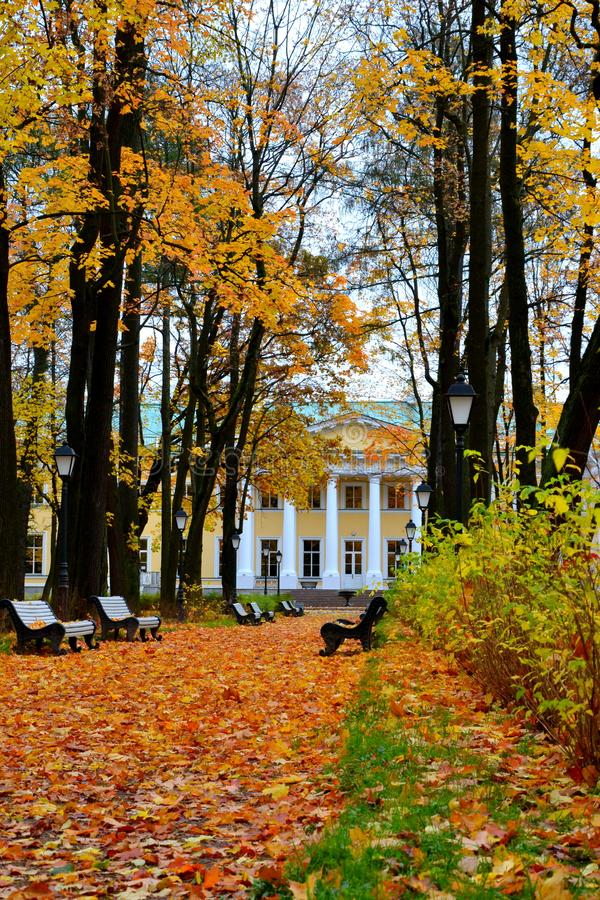 Herbstpark vor einem Gebäude mit Spalten lizenzfreies stockfoto