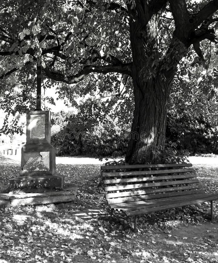 Herbstplatz unter der Linde lizenzfreie stockfotografie