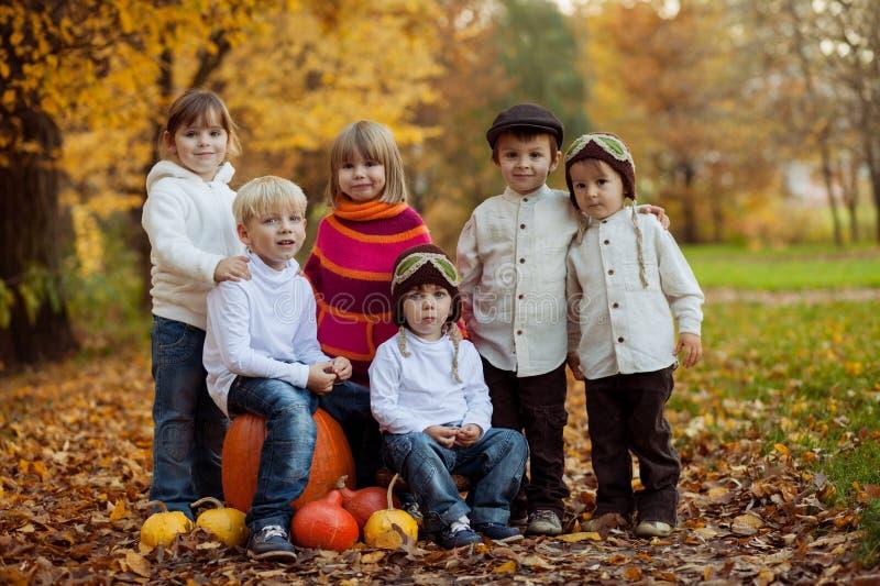 Herbstporträt der Gruppe glücklicher Kinder, im Freien stockfotos