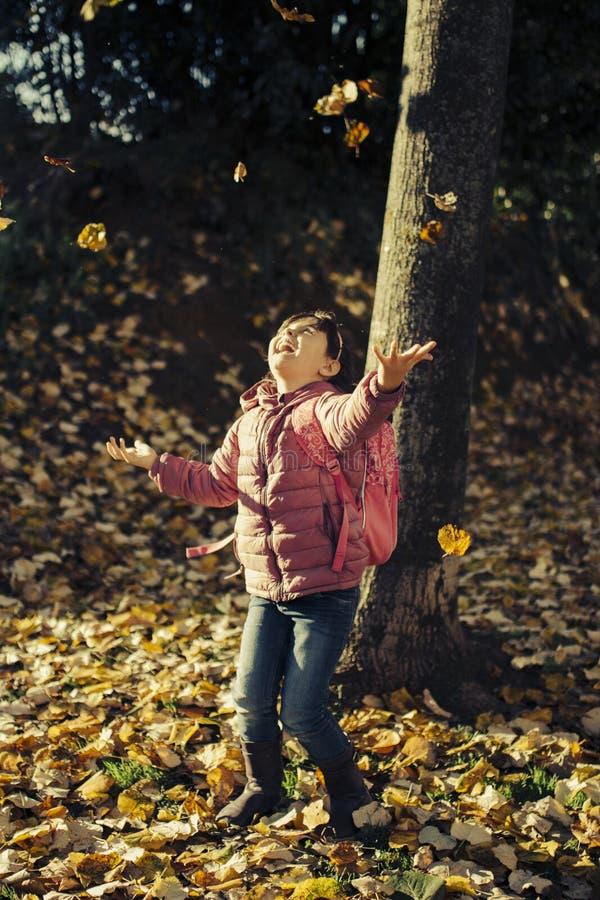 Herbstporträt des kleinen Mädchens stockbild