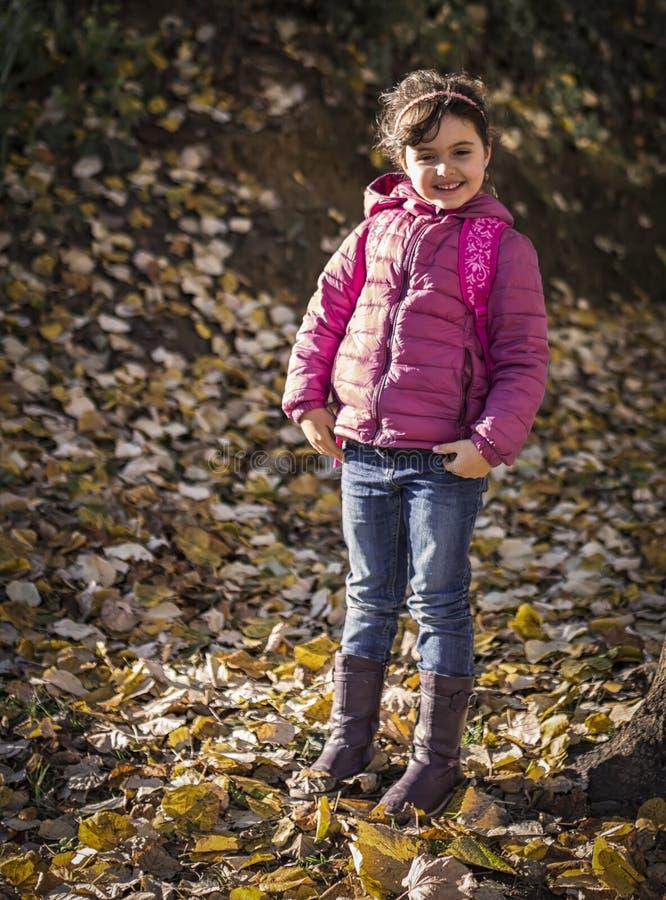 Herbstporträt des kleinen Mädchens stockfotos