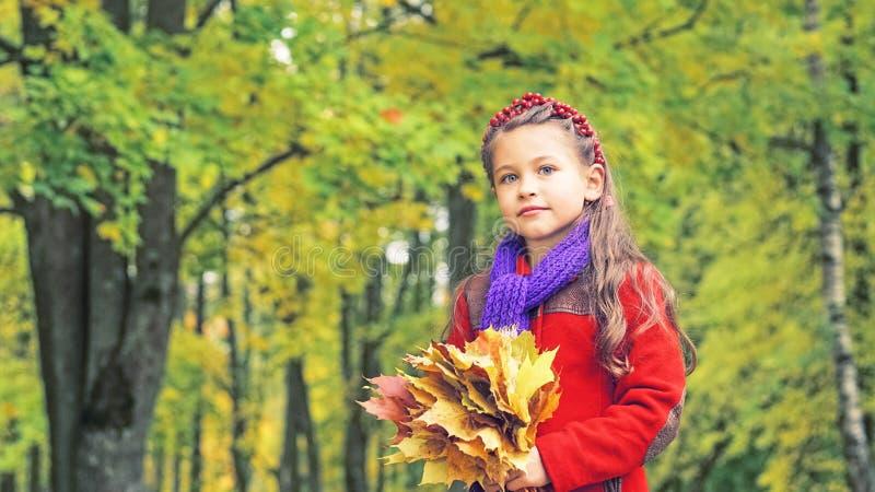 Herbstporträt des netten kleinen Mädchens im roten Mantel In ihren Händen ein Blumenstrauß von gelben Ahornblättern Sonniger Herb lizenzfreie stockfotos