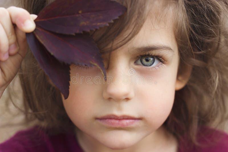 Herbstporträt eines kleinen Mädchens mit schönen grauen Augen lizenzfreies stockbild