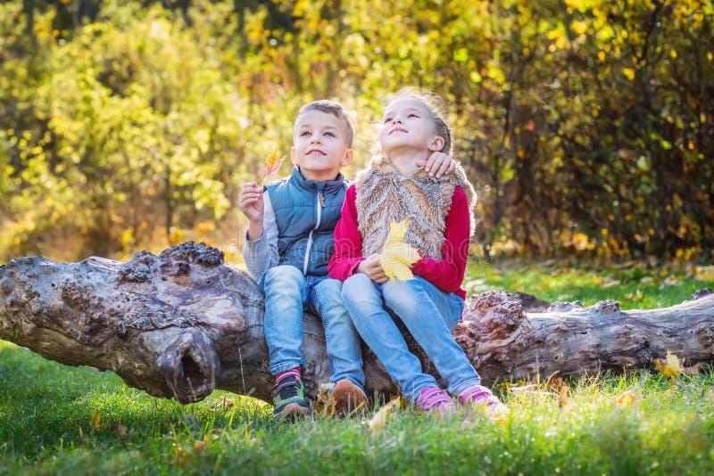 Herbstporträt von glücklichen Kindern, von Bruder und von Schwester stockfotos
